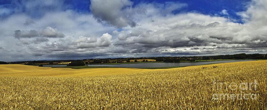 Heiko Photograph - Corn Field Panorama by Heiko Koehrer-Wagner