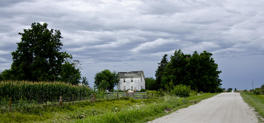 Horse Photograph - Corn Storm Clouds Horse Dirt Road Old House by Wilma  Birdwell