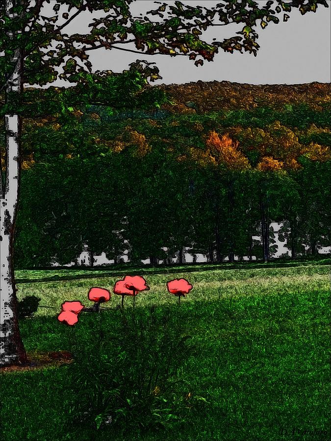 Spring Landscape Drawing - Corner Of My Eye by Debra     Vatalaro
