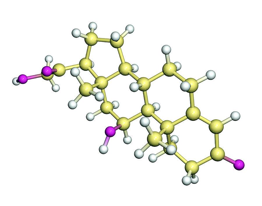 Corticosterone Photograph - Corticosterone Hormone Molecule by Dr Tim Evans