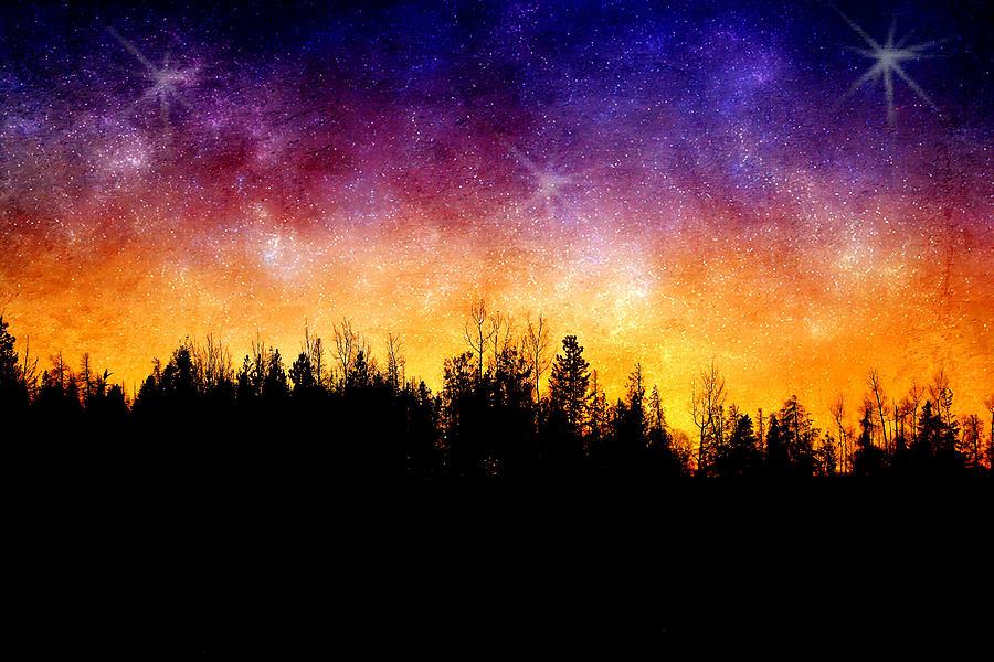 Night Photograph - Cosmic Night by Ellen Heaverlo