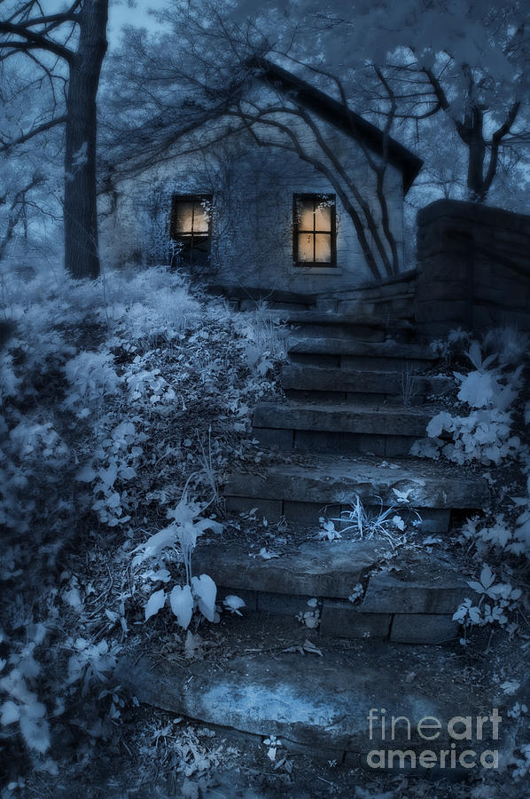 Cottage In The Woods At Night Photograph By Jill Battaglia