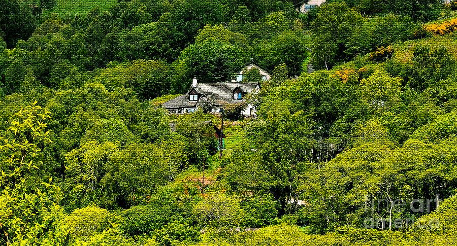 Landscape Digital Art - Cottage In The Woods by Pravine Chester