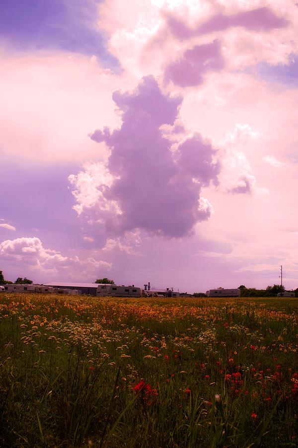 Landscape Photograph - Cotton County Landscape by Toni Hopper