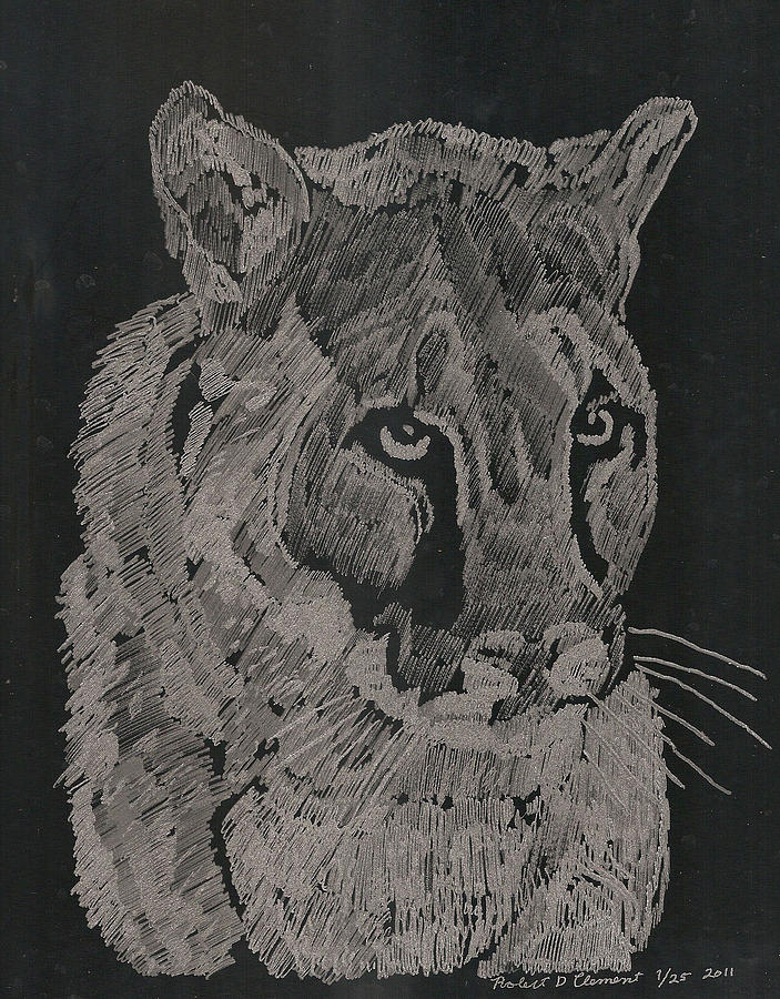 Nature Glass Art - Cougar by Robert Clement