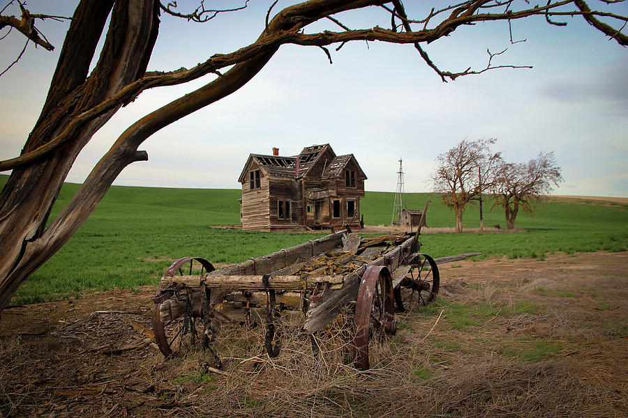 Covered Wagon Photograph - Country Home And Wagon by Athena Mckinzie