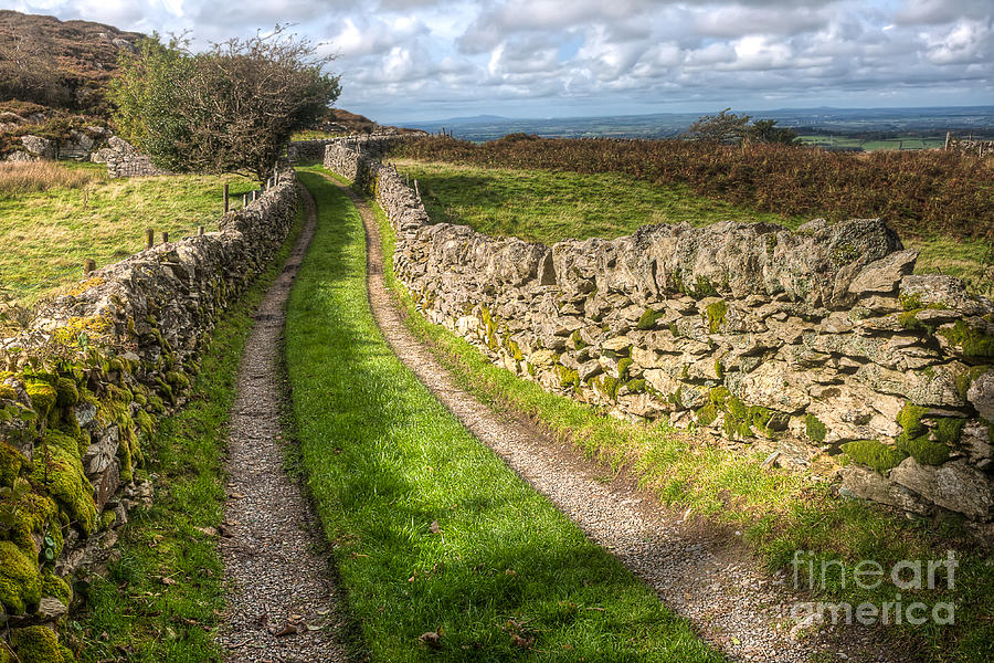 Clouds Photograph - Country Lane by Adrian Evans