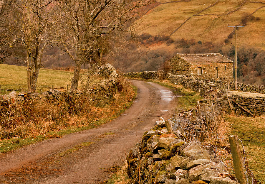 Country Photograph - Country Lane Yorkshire Dales by Trevor Kersley