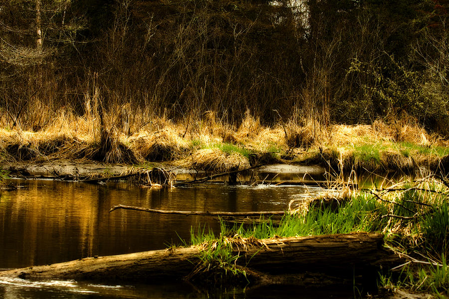 River Photograph - Country River by Gary Smith