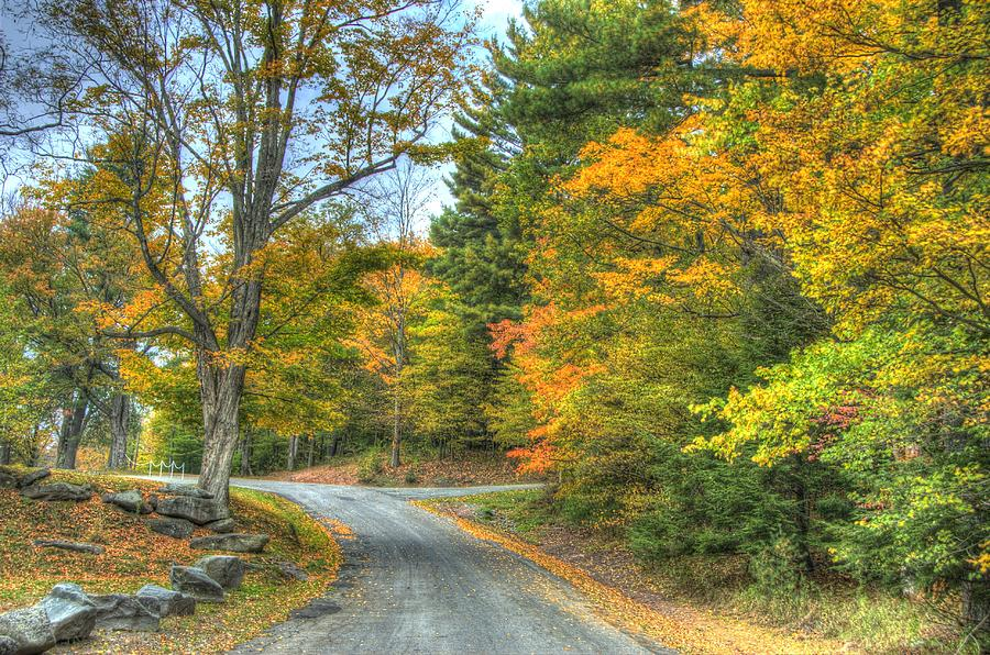 Autumn Photograph - Country Road by Chris Hartman Price