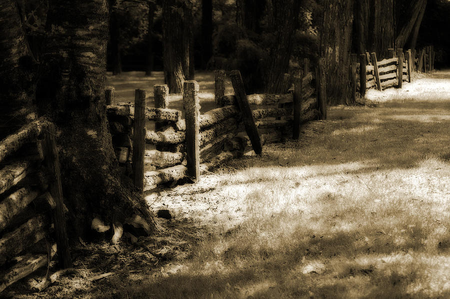 Country Photograph - Country Romance by Terrie Taylor