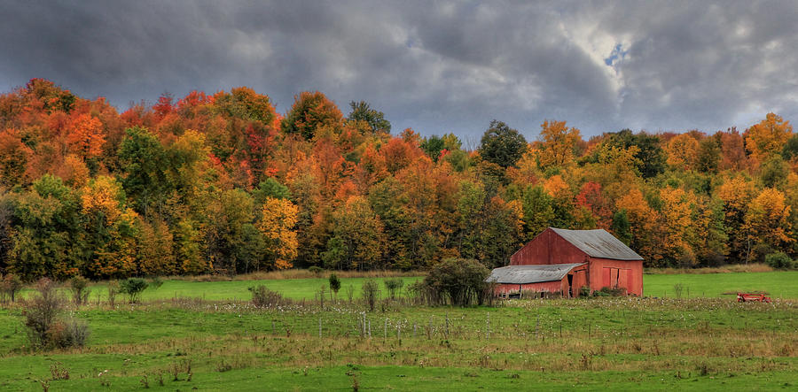 Country Photograph - Country Time by Lori Deiter