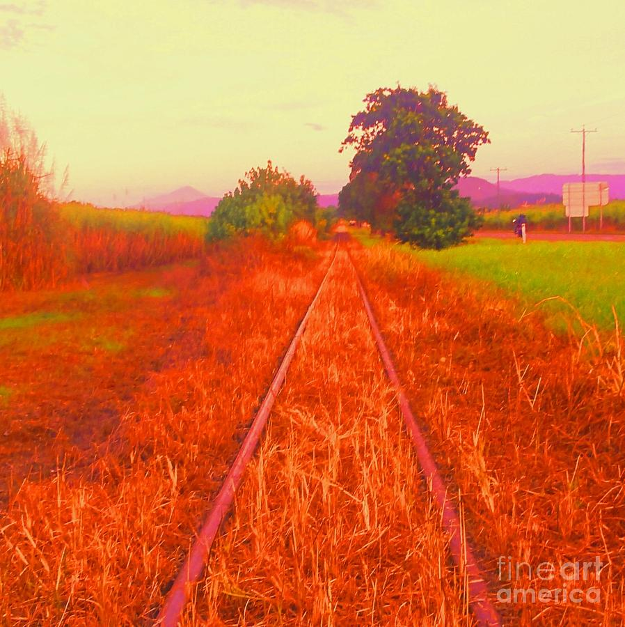 Train Tracks Photograph - Country Tracks by David Peters