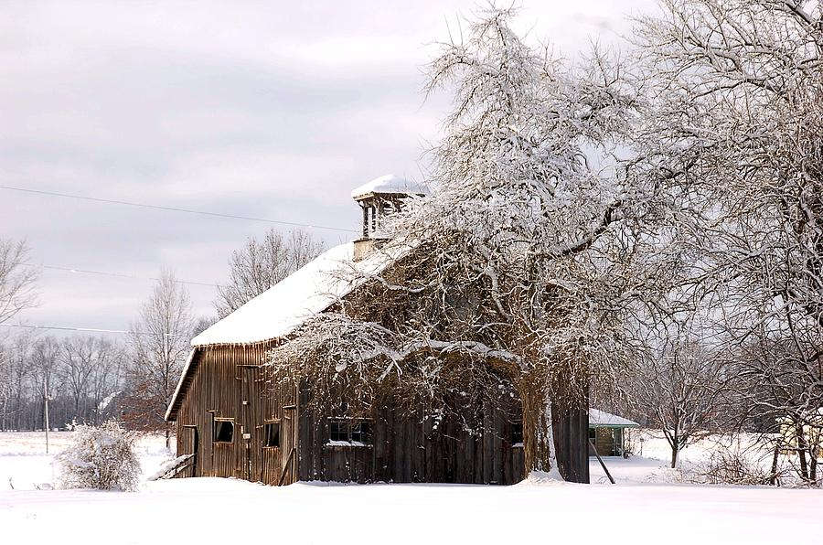 Winter Photograph - Country Winter by Monica Lewis