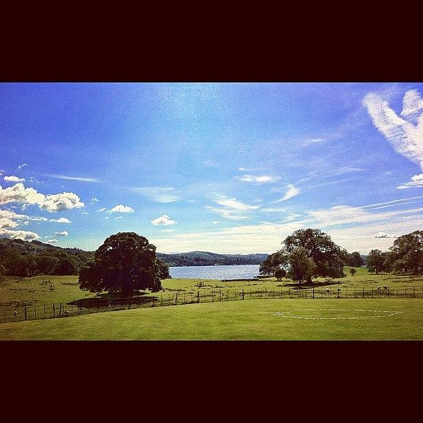 Beautiful Photograph - #countryside #trees #lake #lakedistrict by Samuel Gunnell