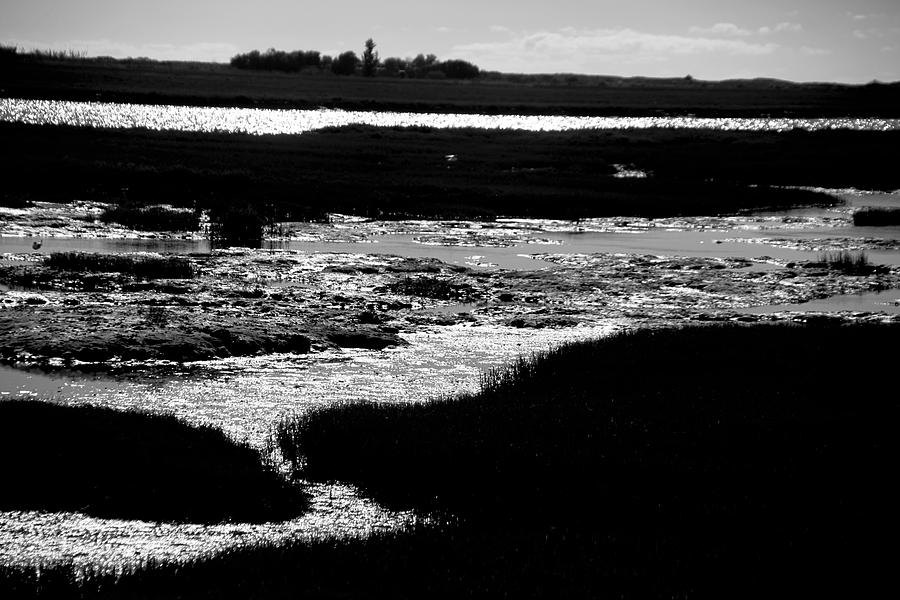 Photographer Photograph - Covering The Marshes by Jez C Self