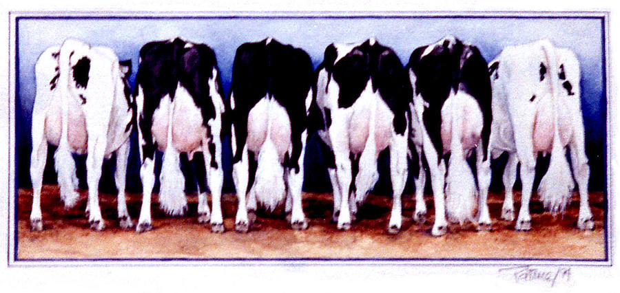 Cow Butts by Patrice Clarkson