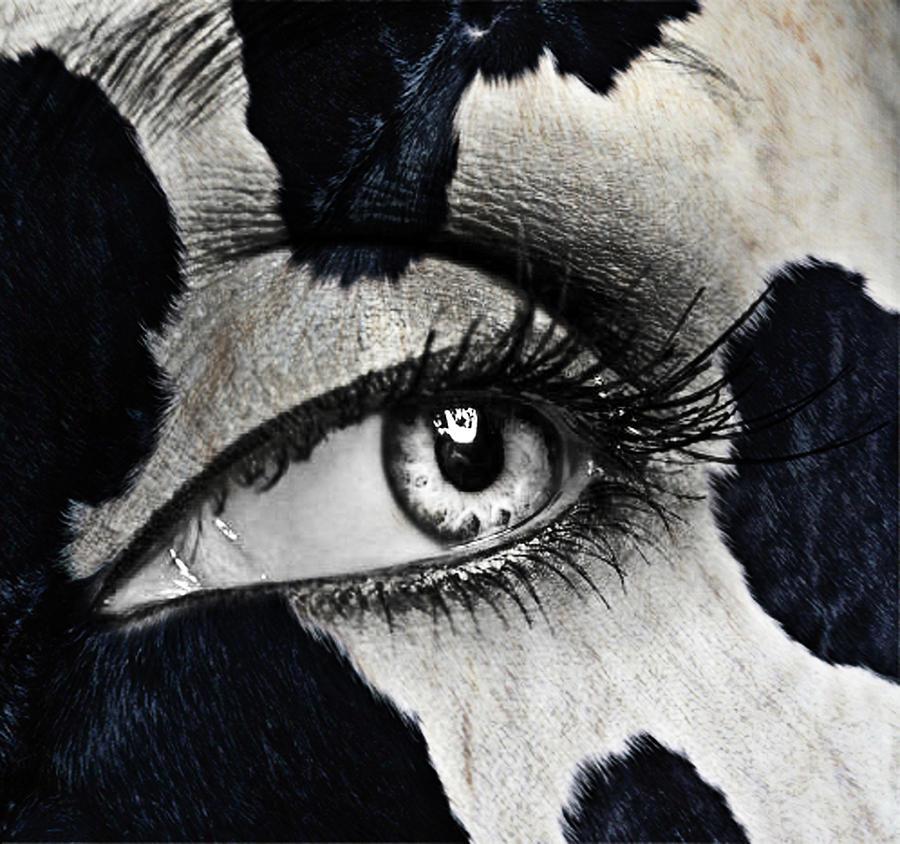 Human Eye Glass Art - Cow by Yosi Cupano
