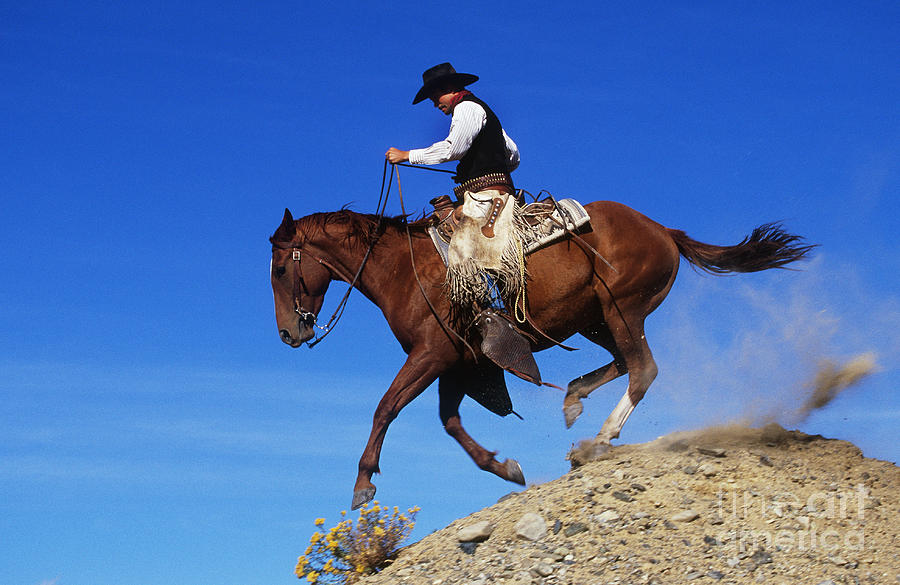 Cowboy Photograph - Cowboy by George D Lepp and Photo Researchers