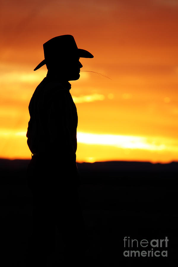 Man Photograph - Cowboy Sunset by Val Armstrong