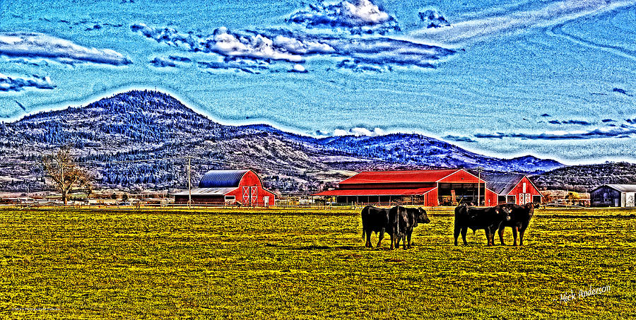 Hdr Photograph - Cows Pasture Barns Superspecialeffect by Mick Anderson