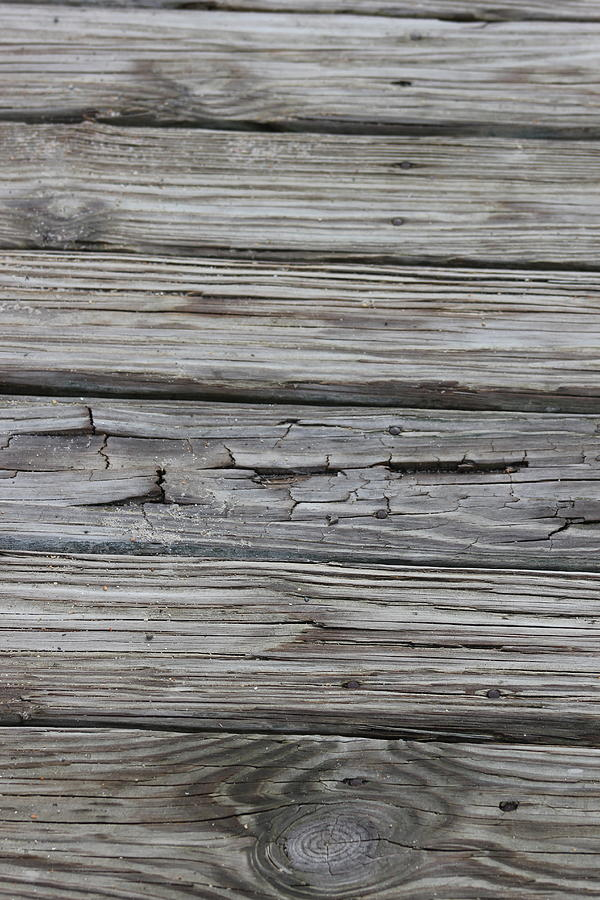 Wood Photograph - Crack by Static Studios