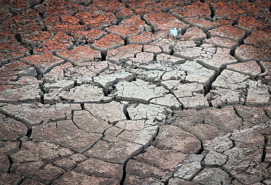 Desert Photograph - Cracked Earth by Athena Mckinzie