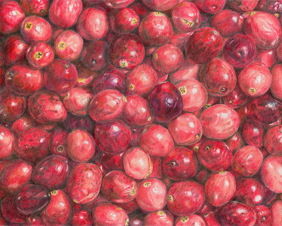 Cranberries Painting - Cranberries by Dominic White