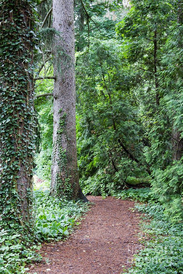 The Gardens At Cranbrook Photograph - Cranbrook College Botanical Gardens by Linda Gardner-Goos