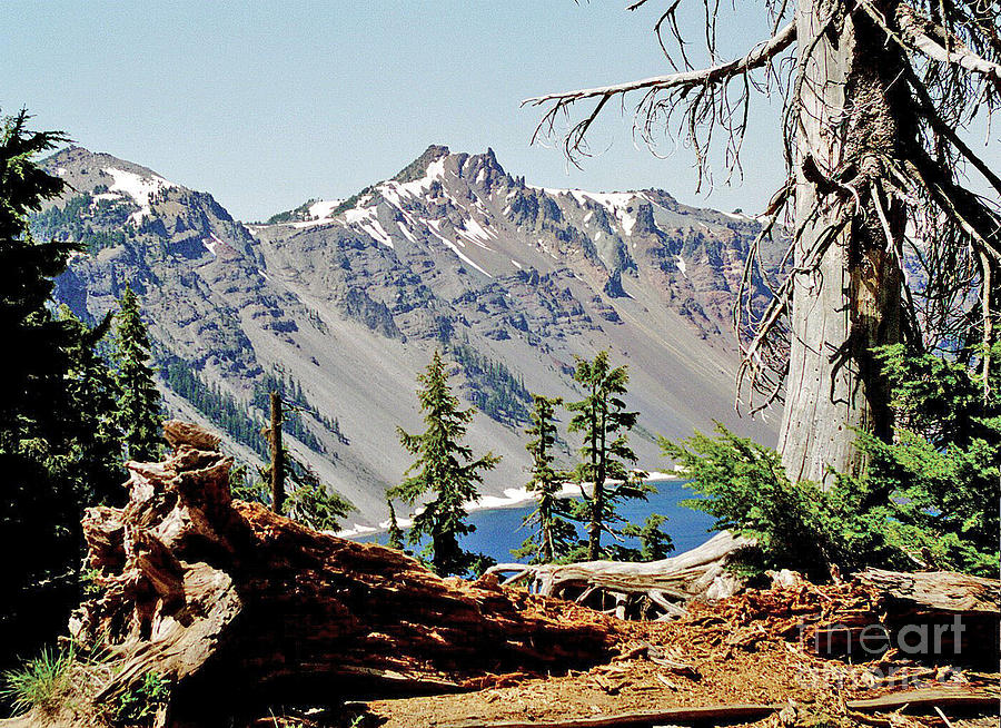 National Parks Photograph - Crater Lake Through Nature by Mike Stone