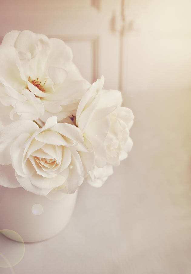 Vertical Photograph - Cream Roses In Vase by Photo - Lyn Randle