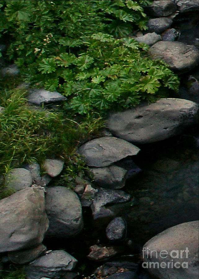 Creek Digital Art - Creek Flow Panel 2 by Peter Piatt