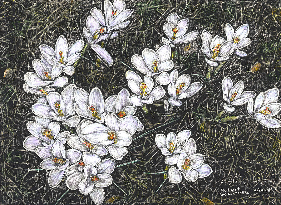 Spring Flowers Painting - Crocus Flowers by Robert Goudreau