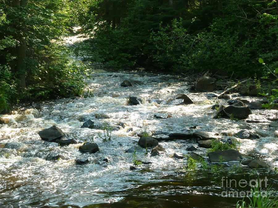 Creek Photograph - Crooked Creek by Art Studio