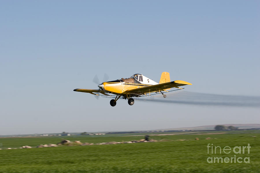 Plane Photograph - Crop Duster Flying Over Farm  by Cindy Singleton
