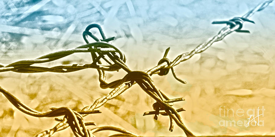 Barbwire Digital Art - Crossroads Of Faith by Artist and Photographer Laura Wrede