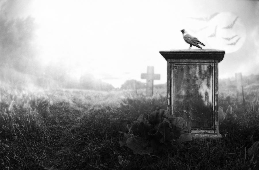 Ancient Photograph - Crow On A Gravestone by Jaroslaw Grudzinski