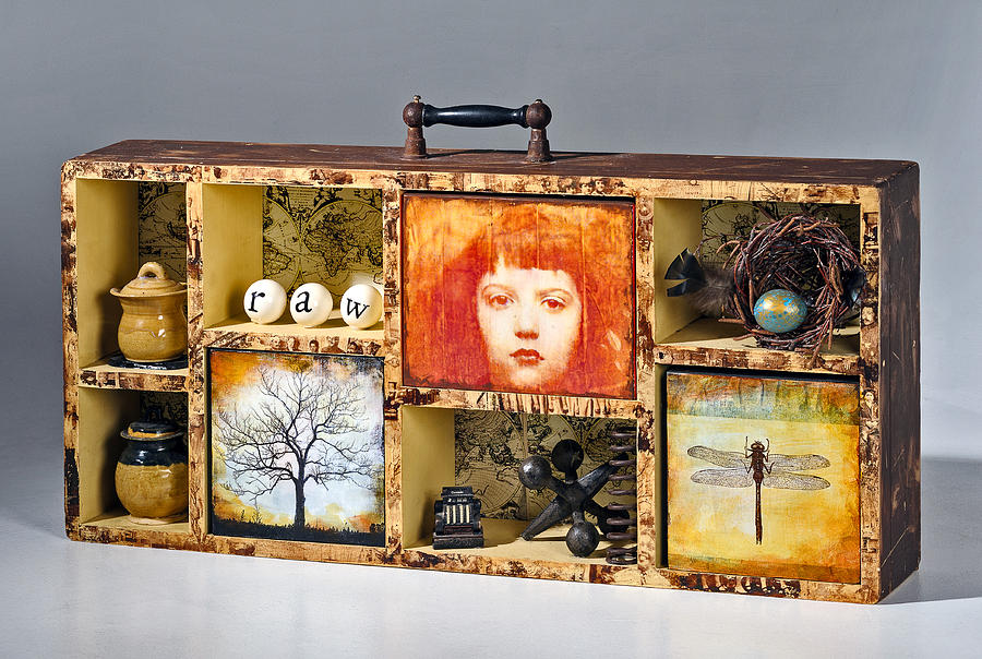 Assemblage Sculpture - Curious Cabinet by Susan McCarrell