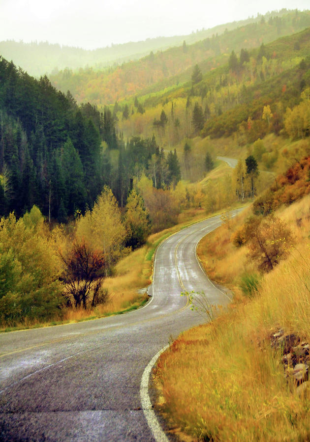 Vertical Photograph - Curve Mountain Road With Autumn Trees by Utah-based Photographer Ryan Houston