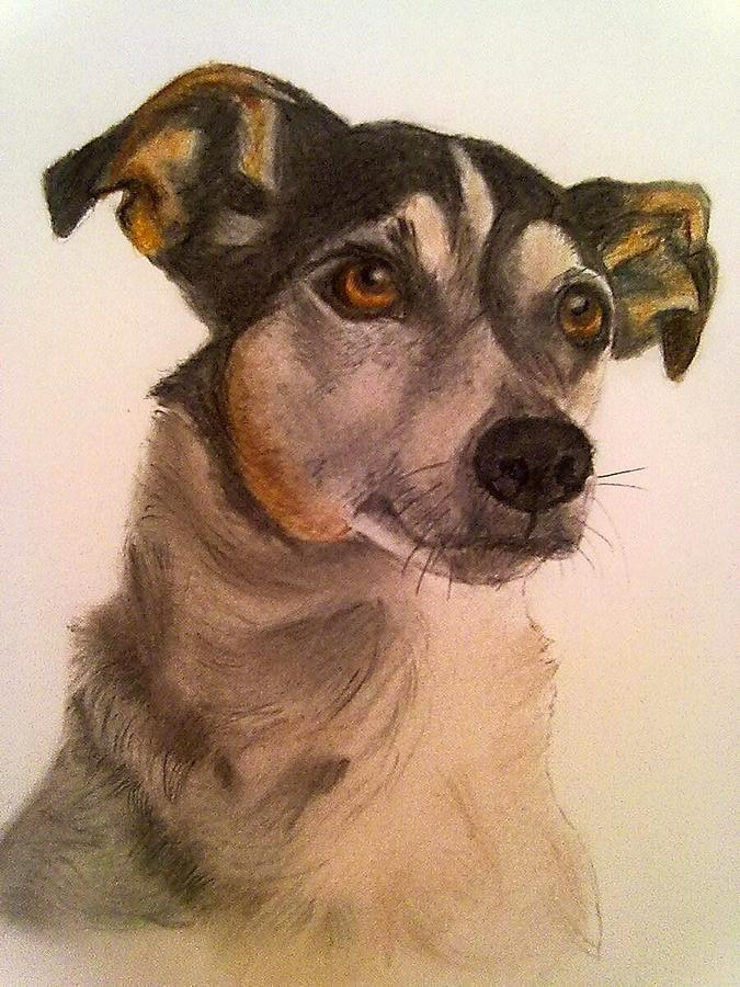 Terrier Drawing - Cute Jack Russell by Diane Leuzzi