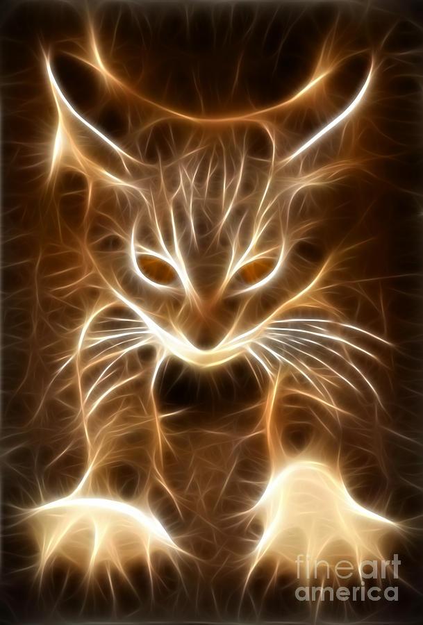 Kitten Mixed Media - Cute Little Kitten by Pamela Johnson