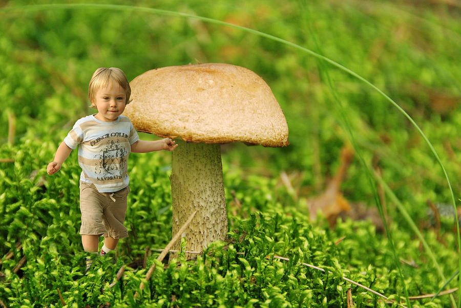 Beautiful Photograph - Cute Tiny Boy Playing In The Forest by Jaroslaw Grudzinski