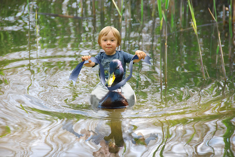 Beautiful Photograph - Cute Tiny Boy Riding A Duck by Jaroslaw Grudzinski