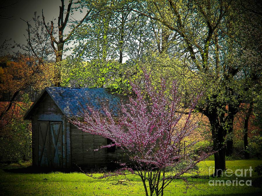 Ohio Photograph - Daddys Old Shed In The Spring by Joyce Kimble Smith