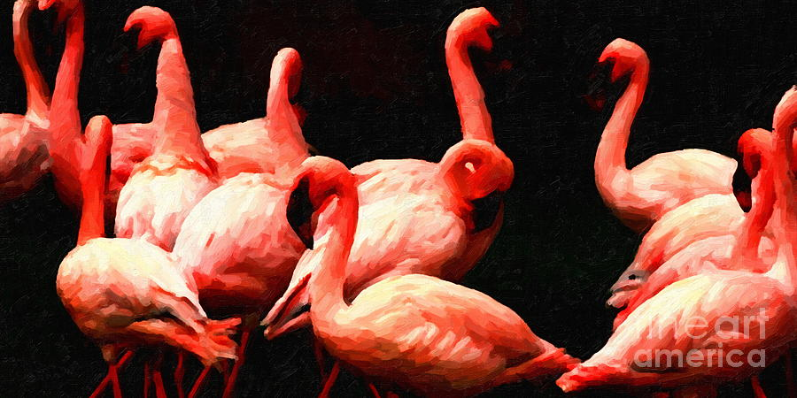 Bird Photograph - Dancing Flamingos by Wingsdomain Art and Photography
