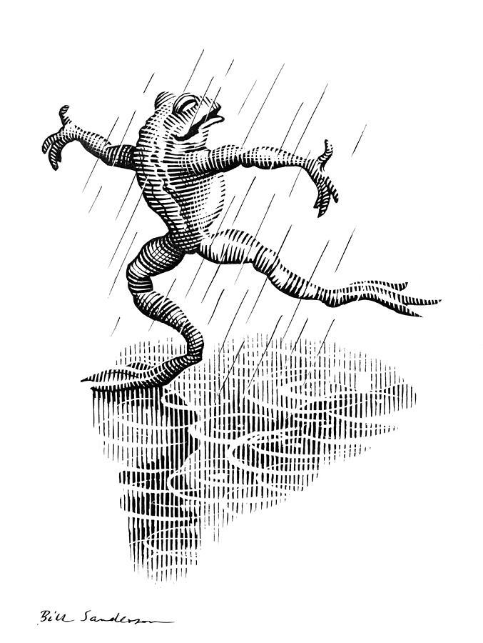 Common Frog Photograph - Dancing In The Rain, Conceptual Artwork by Bill Sanderson