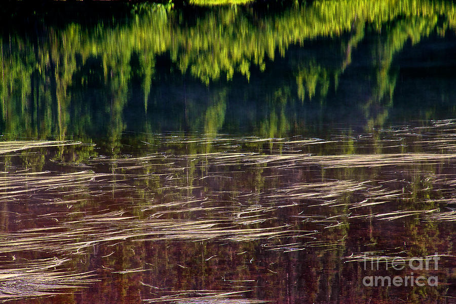 Abstract Photograph - Dancing On Water by Marcus Angeline