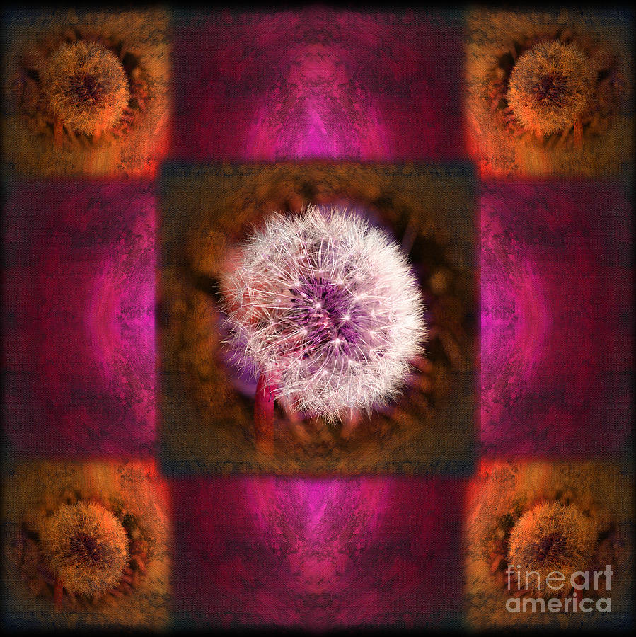Fantasy Photograph - Dandelion In Flame by Laura Iverson