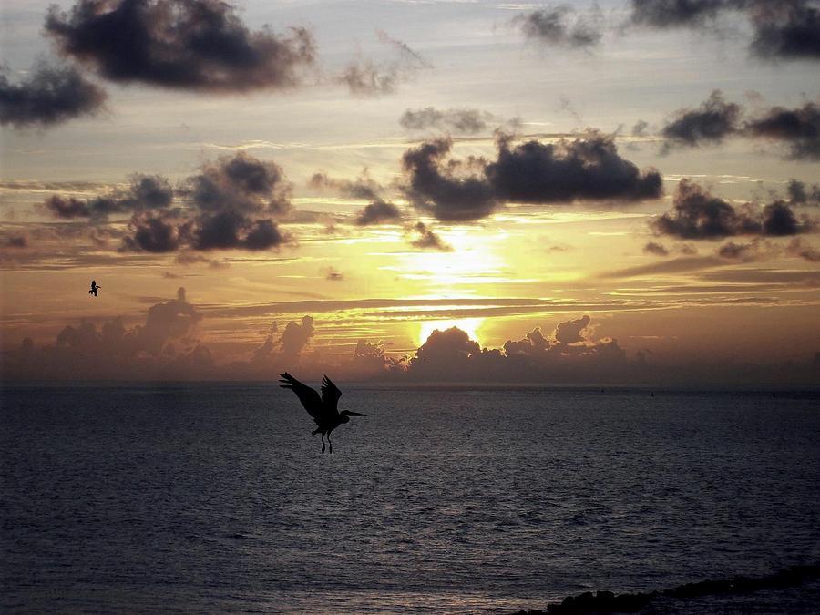 Sun Set Photograph - Dark Clouds by Cynthia Amaral