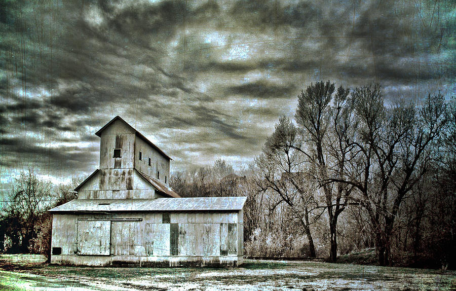 Nature Photograph - Dark Skies by Elizabeth Wilson